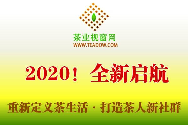 茶业视窗网——观心斋以社群为中心,重新定义茶人的生活
